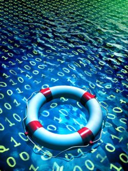 Information security consulting services for businesses that depend on information